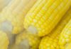 How long to grill corn on the cob with husks