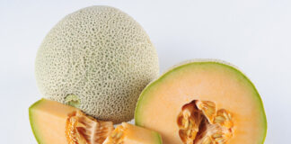 How do you tell if a cantaloupe has gone bad? 5 Easy Steps