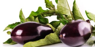 How do you know if your eggplant has gone bad? 5 Easy Steps